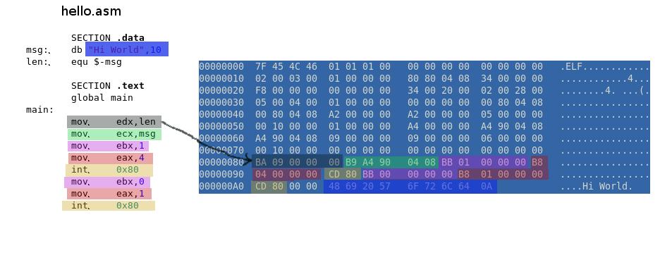 Smallest x86 ELF Hello World